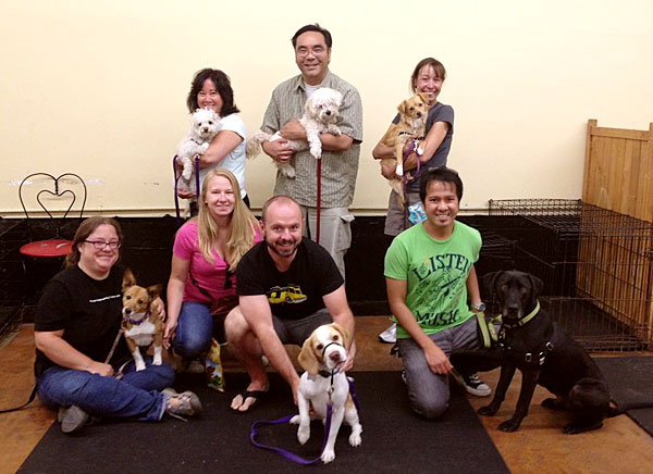 Photo of DogEvolve training class, San Francisco CA